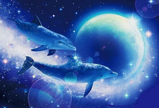 BLUE MOON AND DOLPHIN.jpg