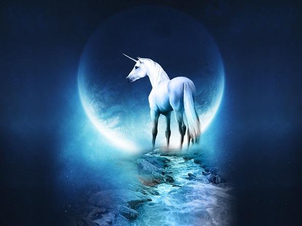 Fantasy-fantasy-23587234-1600-1200.jpg