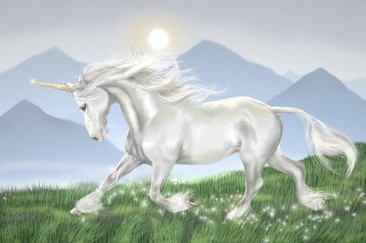 cliche_unicorn_copyright_amanda_(moodymand) - コピー.jpg